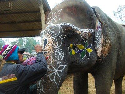 main_Nepal-DSCF3085