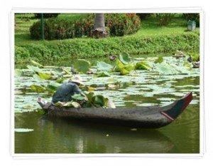 river-canoe-Cambodia