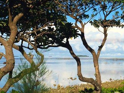 Beautiful beach in Tonga